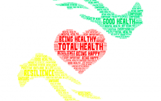 a word cloud of parents' definitions of wellness; the word cloud is in the shape of 2 hands holding a heart