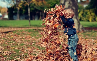 a young boy playing with dried leaves | image credit: Scott Webb via Unsplash.com