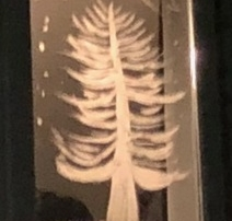 A tree under the stars, painted on a mirror