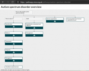 flowchart showing the recommended pathway for Autism from the National Institute for Health and Care Excellence (NICE)